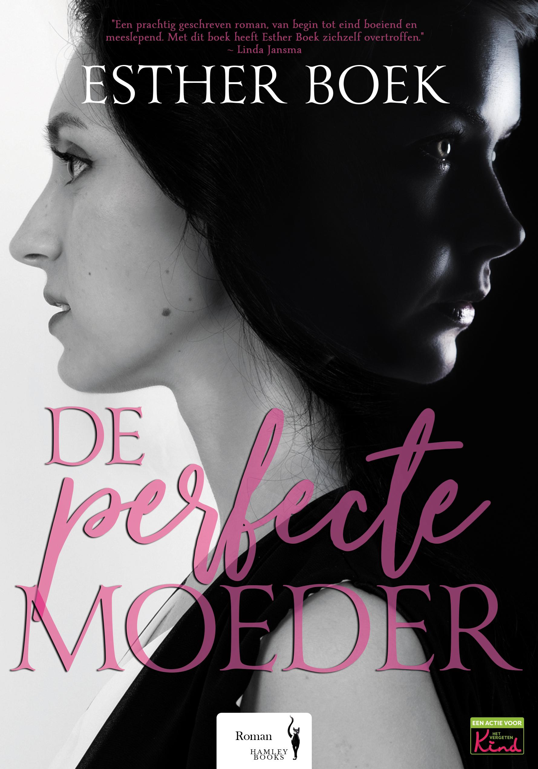De Perfecte Moeder - Esther Boek