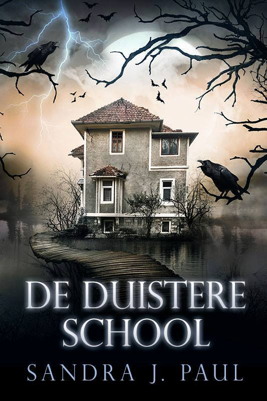 De duistere school - Sandra J Paul