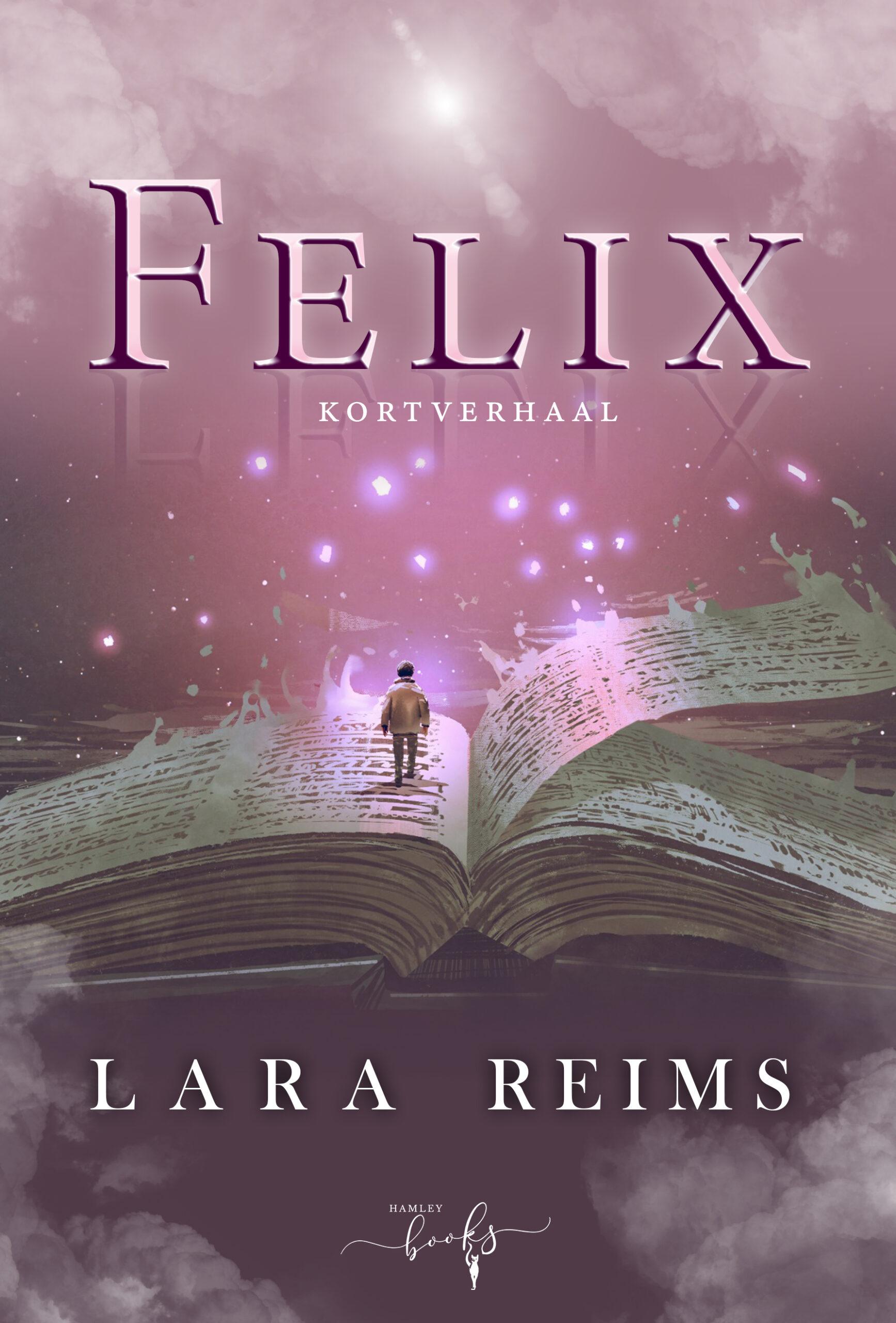 felix_larareims_kortverhalen_hamleybooks